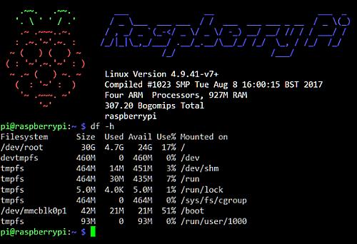 Raspbian Terminal