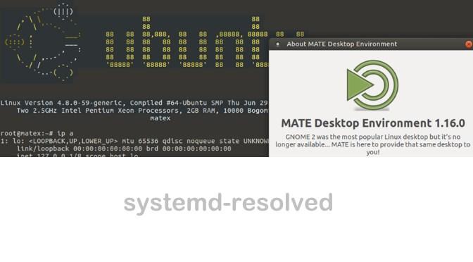 systemd-resolved