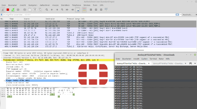 FortiGate Sniffer Output in Wireshark