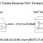 SSH Tunnel Reverse Port forwarding