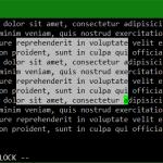 Disable VIM copy paste Insert Visual Mode