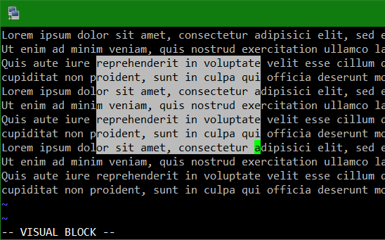Disable VIM Visual Block Mode when inserting with mouse right-click